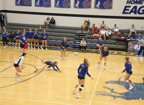 Eagle's Volleyball
