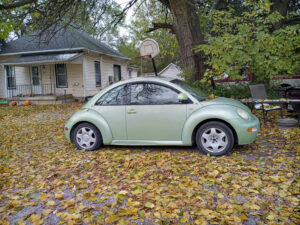 VW Beetle in autumn leaves